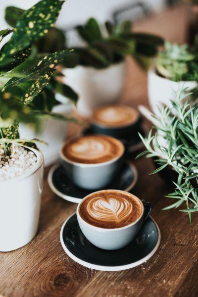 Best coffees in Prague